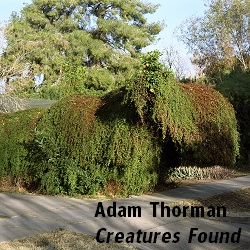 Thorman_Adam_Creatures_Found_01